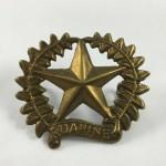 NZ 17th Ruahine Regiment Cap / Collar Badge - Lot 530C